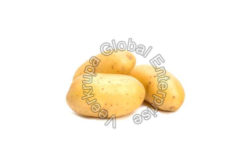 Fresh Raw Potato Manufacturers In Sant Kabir Nagar