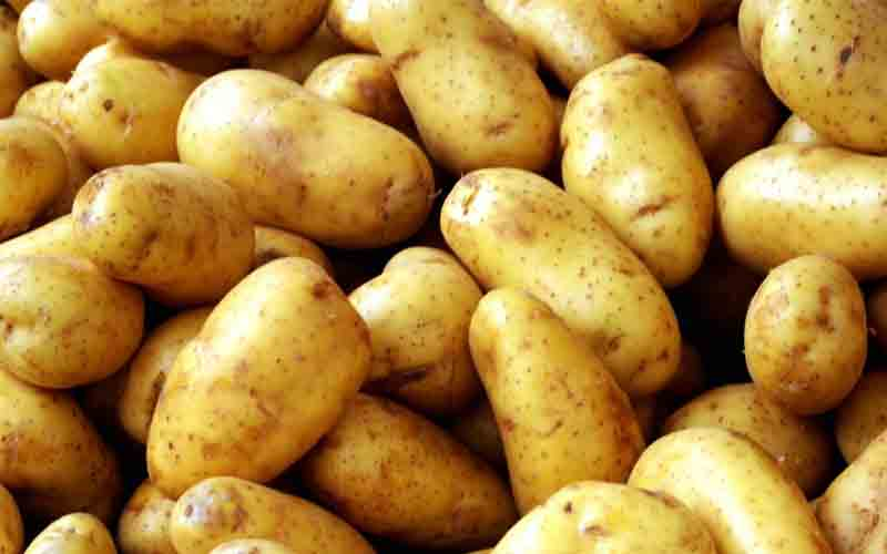Natural Potato Manufacturers In Sant Kabir Nagar